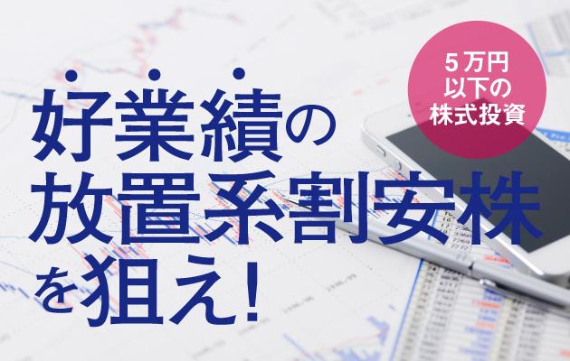 5万円以下の株式投資は好業績の放置系割安株を狙え